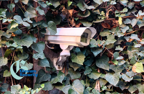 The Importance of CCTV Maintenance for your Business